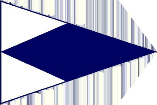Tampa Yacht Club Burgee